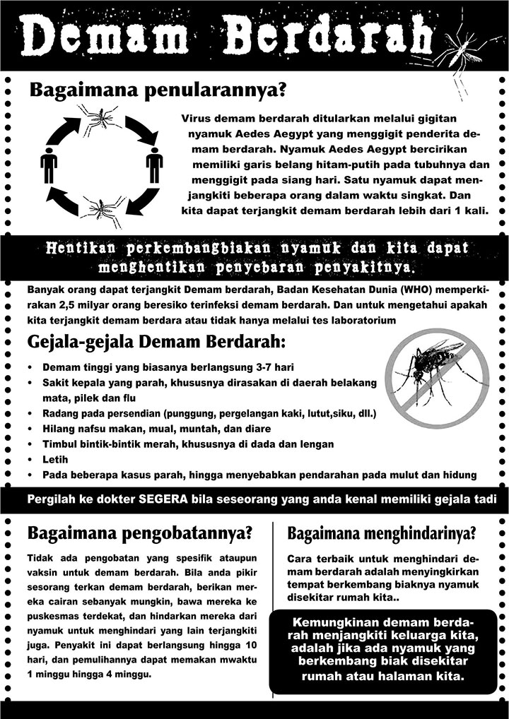 Disaster Management factsheet Dengue Fever