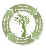 Cycle of Resilience