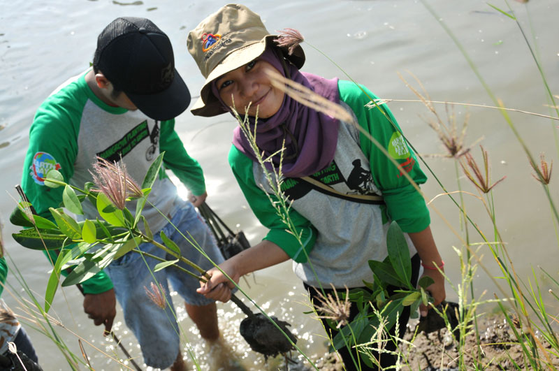 IDEP Foundation Replanting Indonesia Mangrove